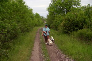 Millennium Trail