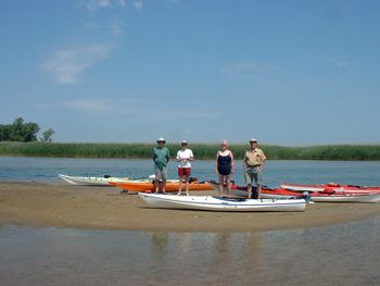Kayakers. This shallow open channel is now completely sealed by invasive Phragmites grass. Photo by Terry Sprague